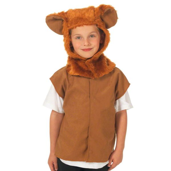 Children's Boys and Girls Lion Wizard of Oz Tabard Costume